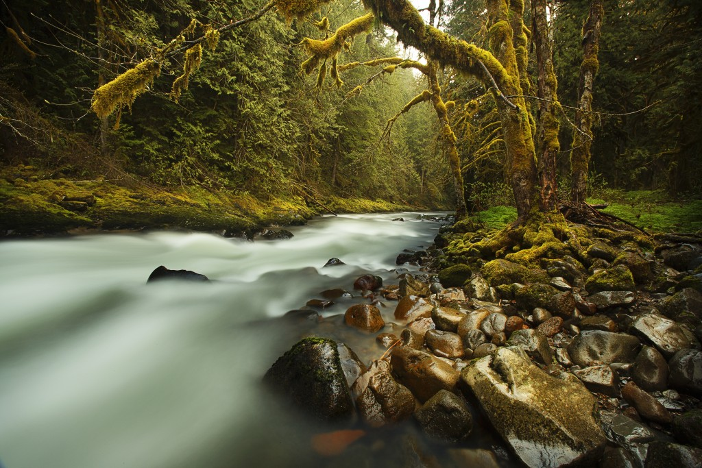Life is like a river and constantly flowing.