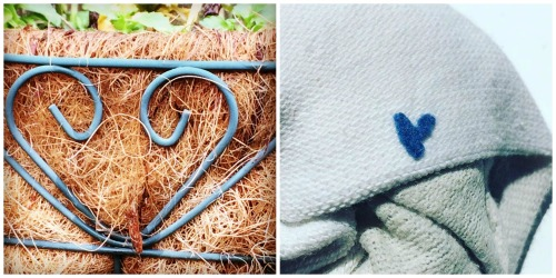 I took both of these pictures. I found the blue fuzz on my sock just like this -- no arranging from me.